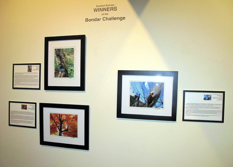 Winning SBBC images with their winning essays on display at a TELE