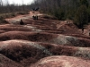 in the Caledon Hills badlands