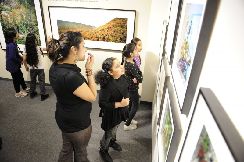 Teachers and students discuss photographs and biodiversity