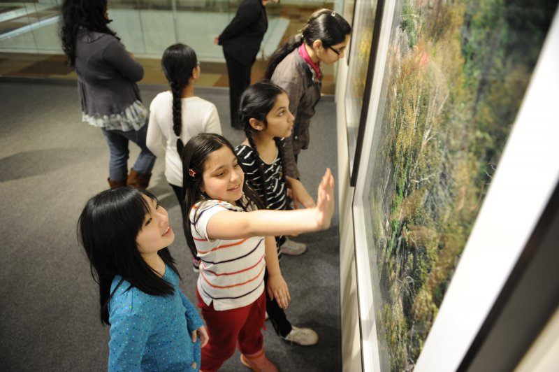 Students discuss Woodland Caribou in the Boreal Forest