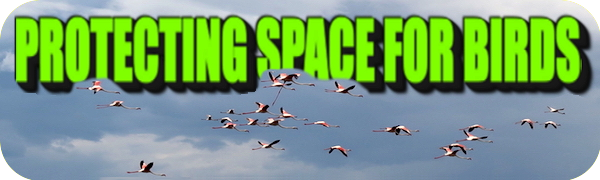 PROTECTING SPACE FOR BIRDS