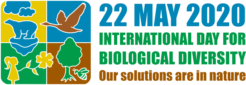 4-piece Logo of 2015 International Day for Biological Diversity